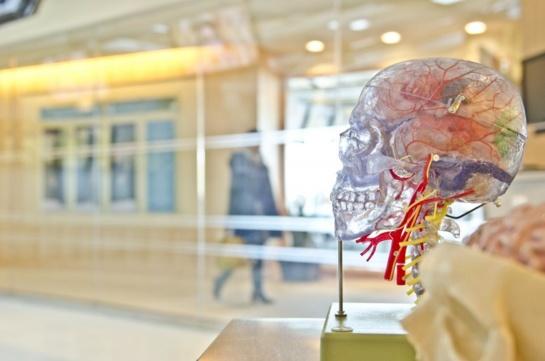 """VU profesorius Aidas Alaburda: """"Vis daugiau jaunų žmonių domisi nervų sistema ir jos tyrimais"""""""