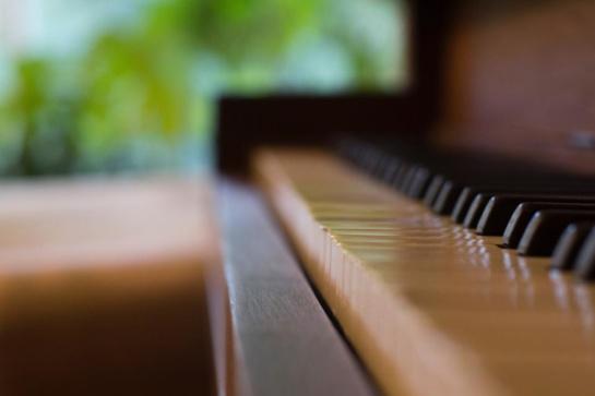 Į Neringą grįžta festivalis, sujungiantis muziką ir ekologiją