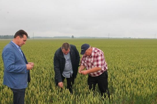 Išrinkti geriausi metų ūkininkai (FOTO)