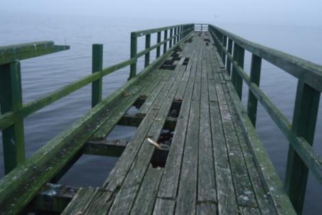 Koks bus naujasis Rėkyvos ežero tiltas?