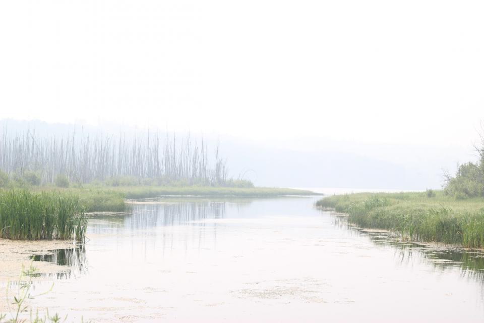 Vandens telkinius bus galima tvarkyti paprasčiau