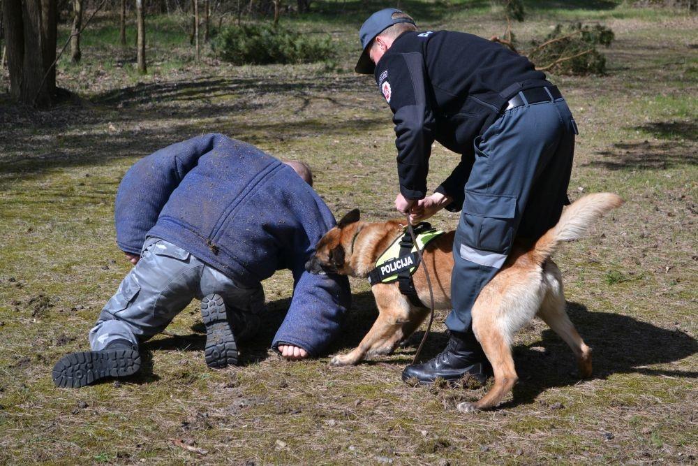 """Keturkojai Klaipėdos """"pareigūnai"""": ir meilumo įsikūnijimas, ir gelbėtojai, ir dantyti žvėrys"""