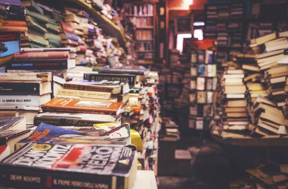 """""""Vaikų svajonių"""" organizatoriai užsimojo surinkti 1 tūkst. knygų vaikų dienos centrams"""