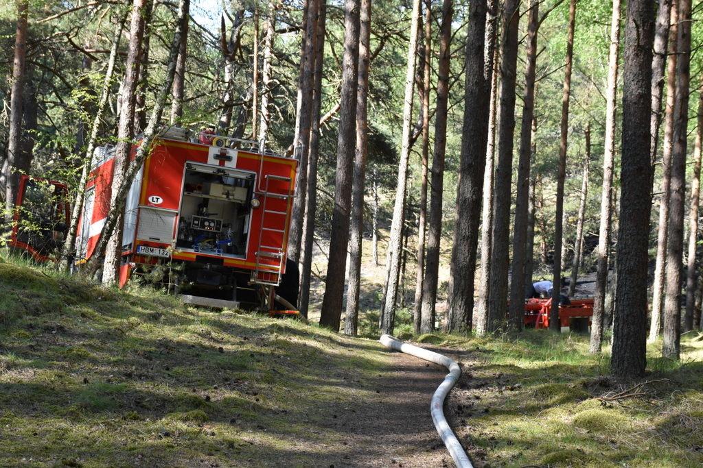 Įtariama, kad gaisras miške Nidoje kilo dėl padegimo