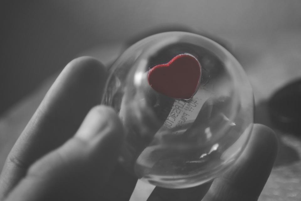 Organų donorystė ir transplantacijos: padaryta daugiau nei įmanoma