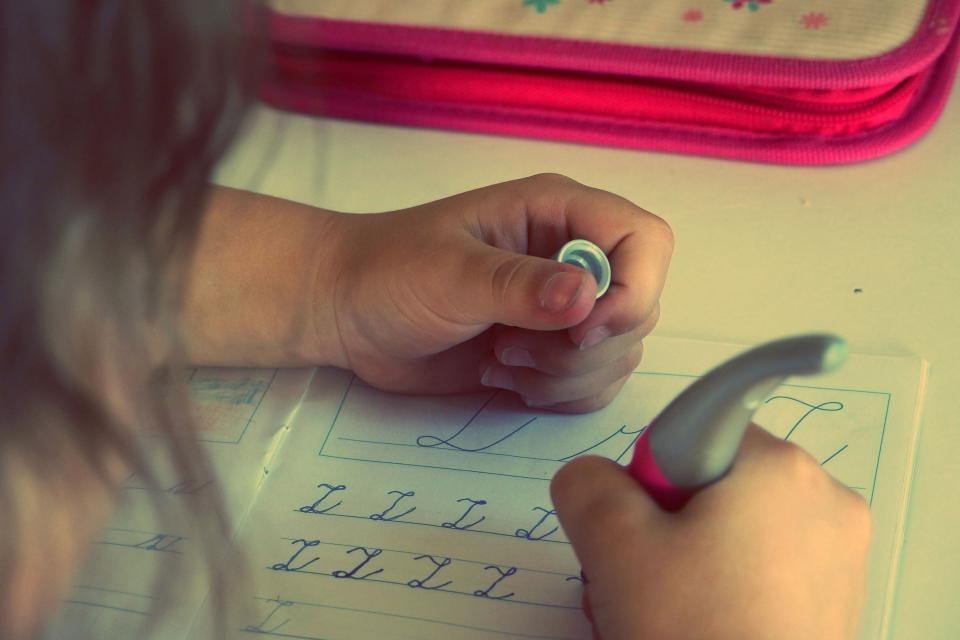 Prienų miesto ikimokyklinio ugdymo įstaigų darbas vasaros metu
