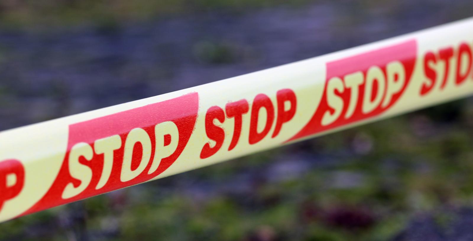 Vilnietis bute laikė savadarbę granatą