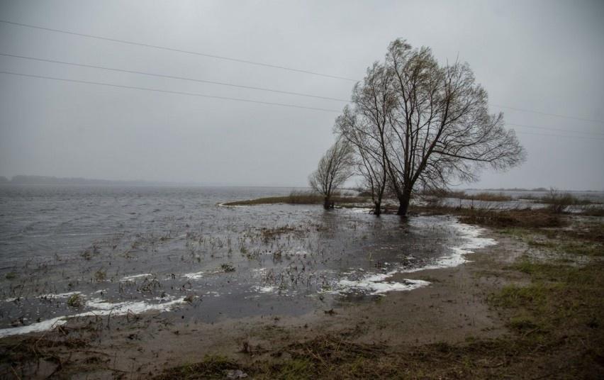Bus rengiama nauja pasirengimo potvyniams ir potvynių padariniams šalinti programa