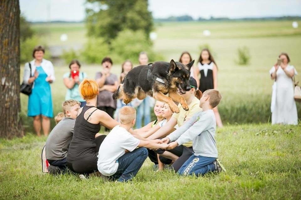 Šuns ir žmogaus draugystė Ukmergėje stiprinama dresūros mokyklėlėje (nuotraukos)