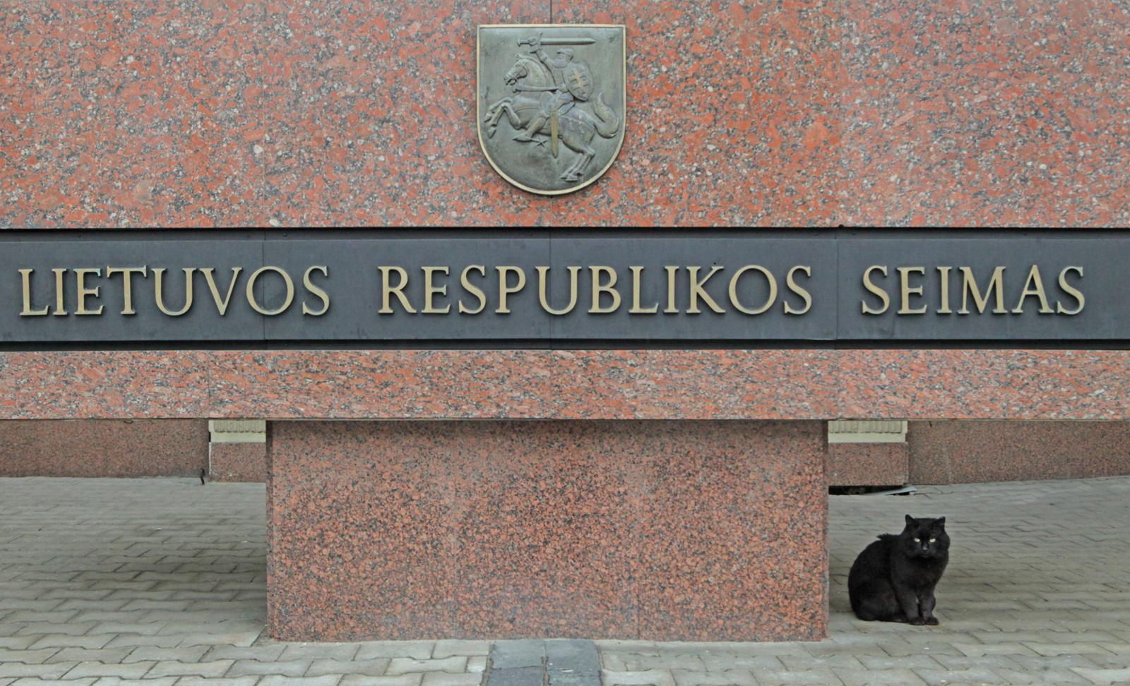 Seimas atmetė konservatorių inicijuotą rezoliucijos projektą dėl mokytojų algų didinimo