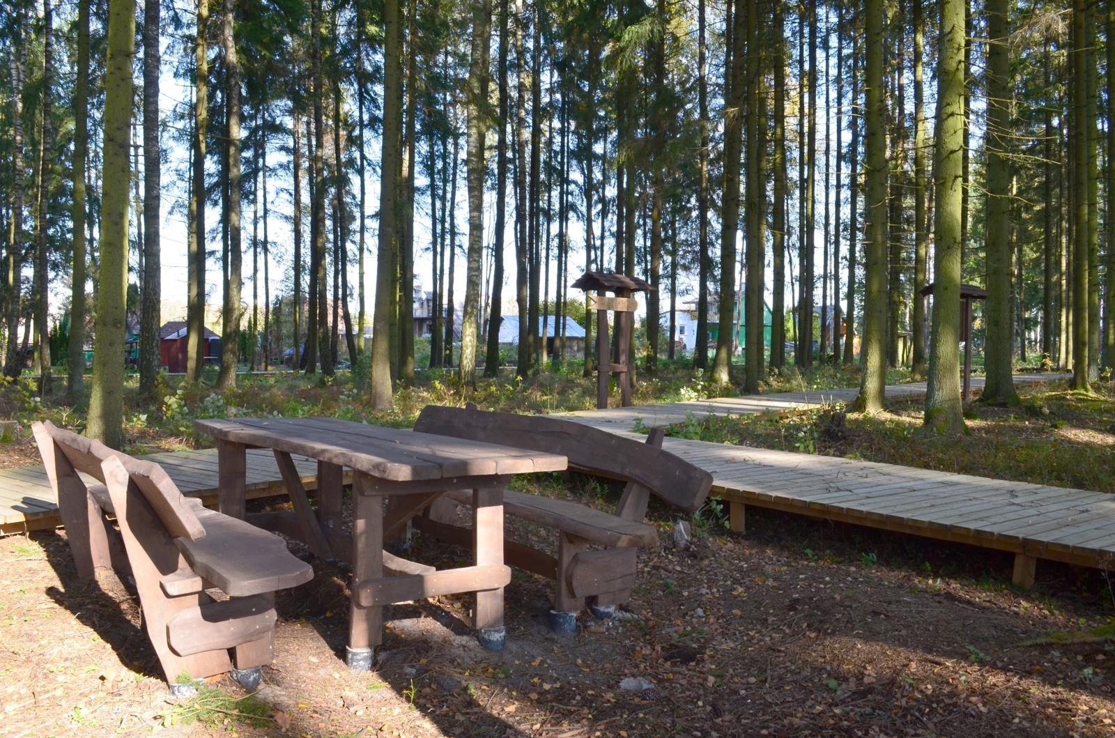 Poilsio zonos miškuose– atviros visuomenei