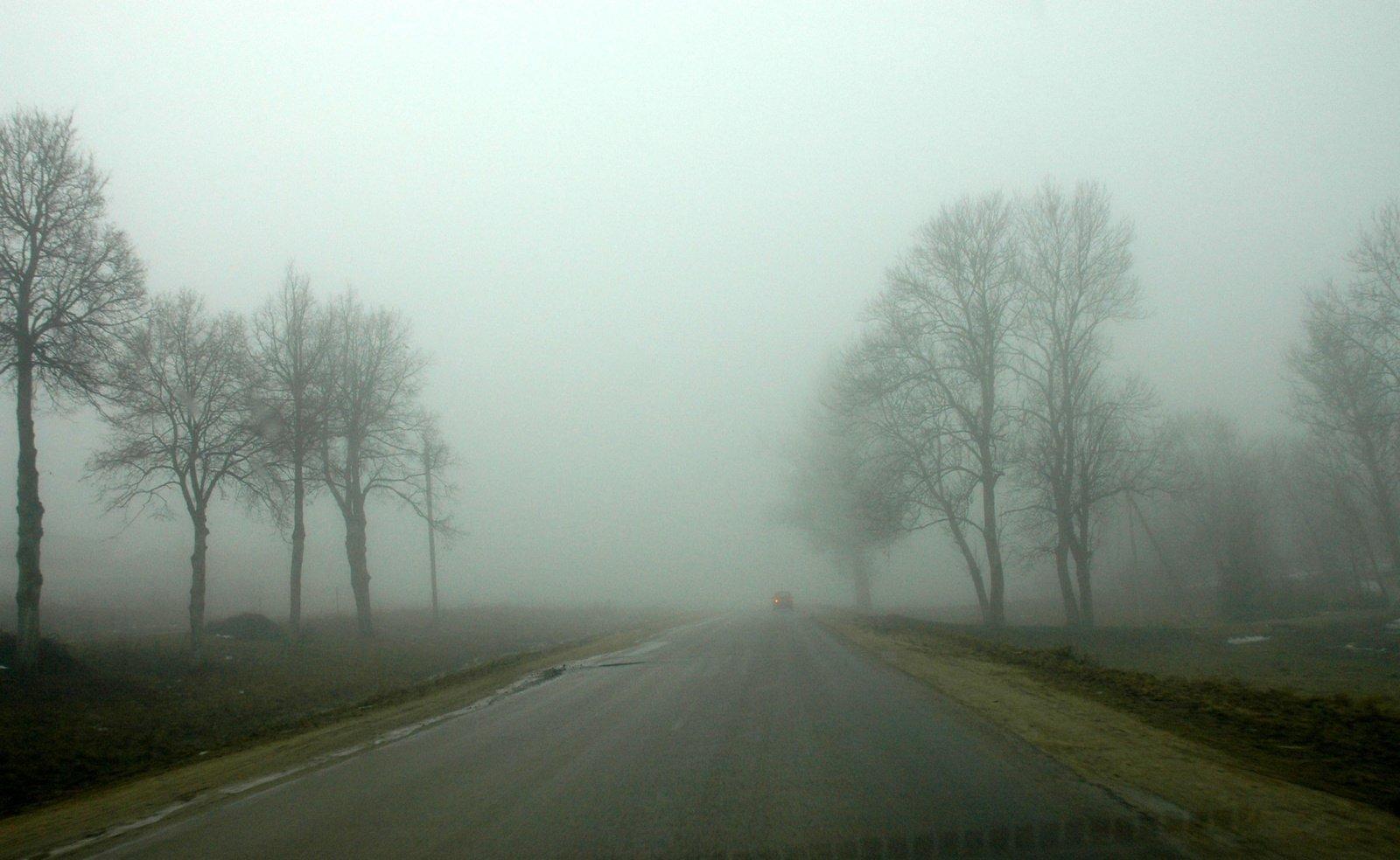 Kelininkai: Utenos rajone eismo sąlygas sunkina rūkas