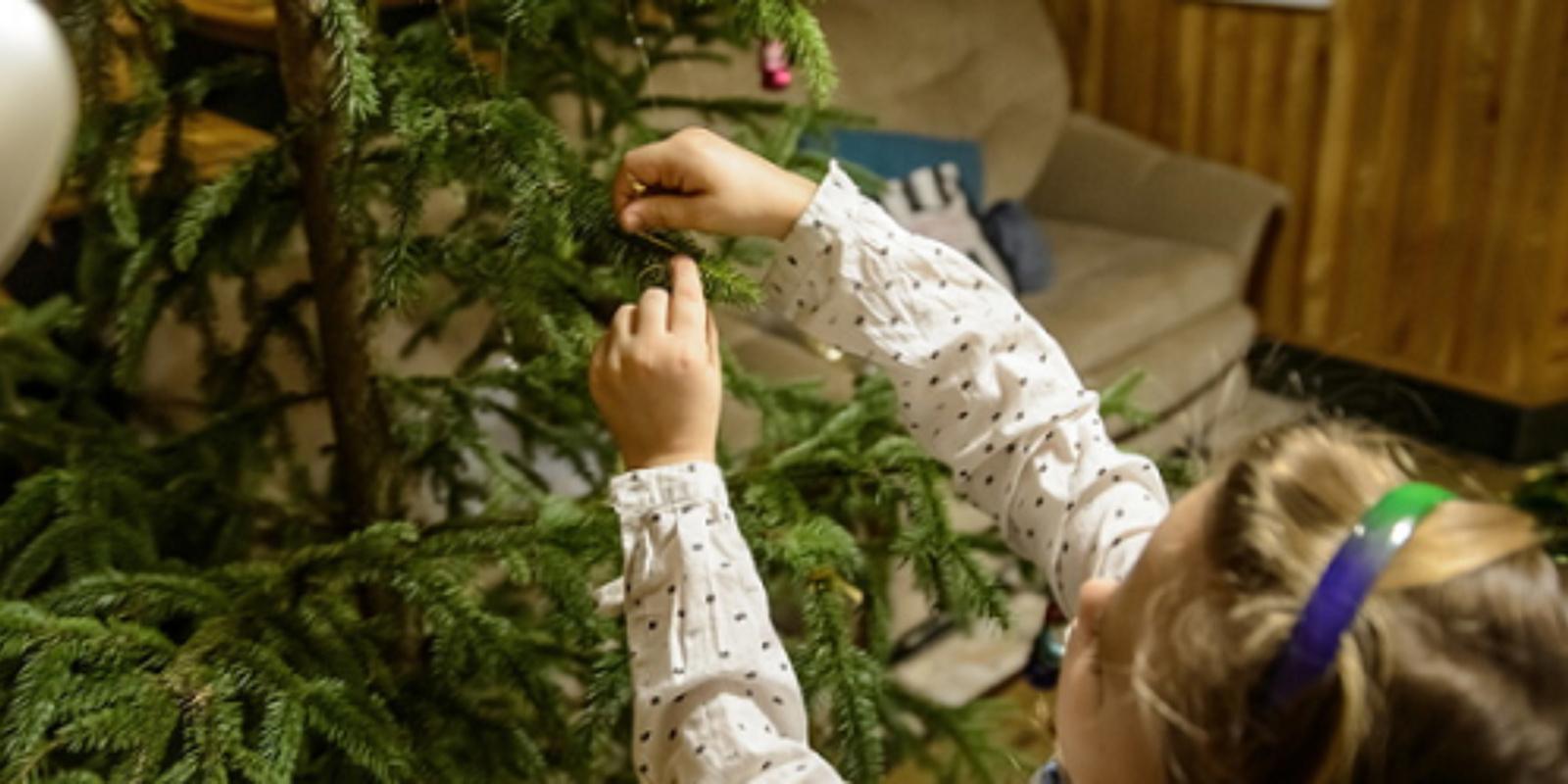 Kaip atsisveikinti su Kalėdų eglute?