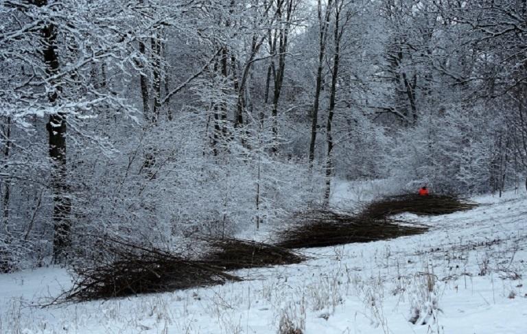 Apuolės valstybiniame kraštovaizdžio draustinyje šalinami menkaverčiai medžiai ir krūmai