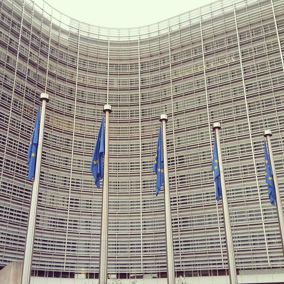 EP remia Europos žaliąjį kursą ir siekia dar didesnių užmojų