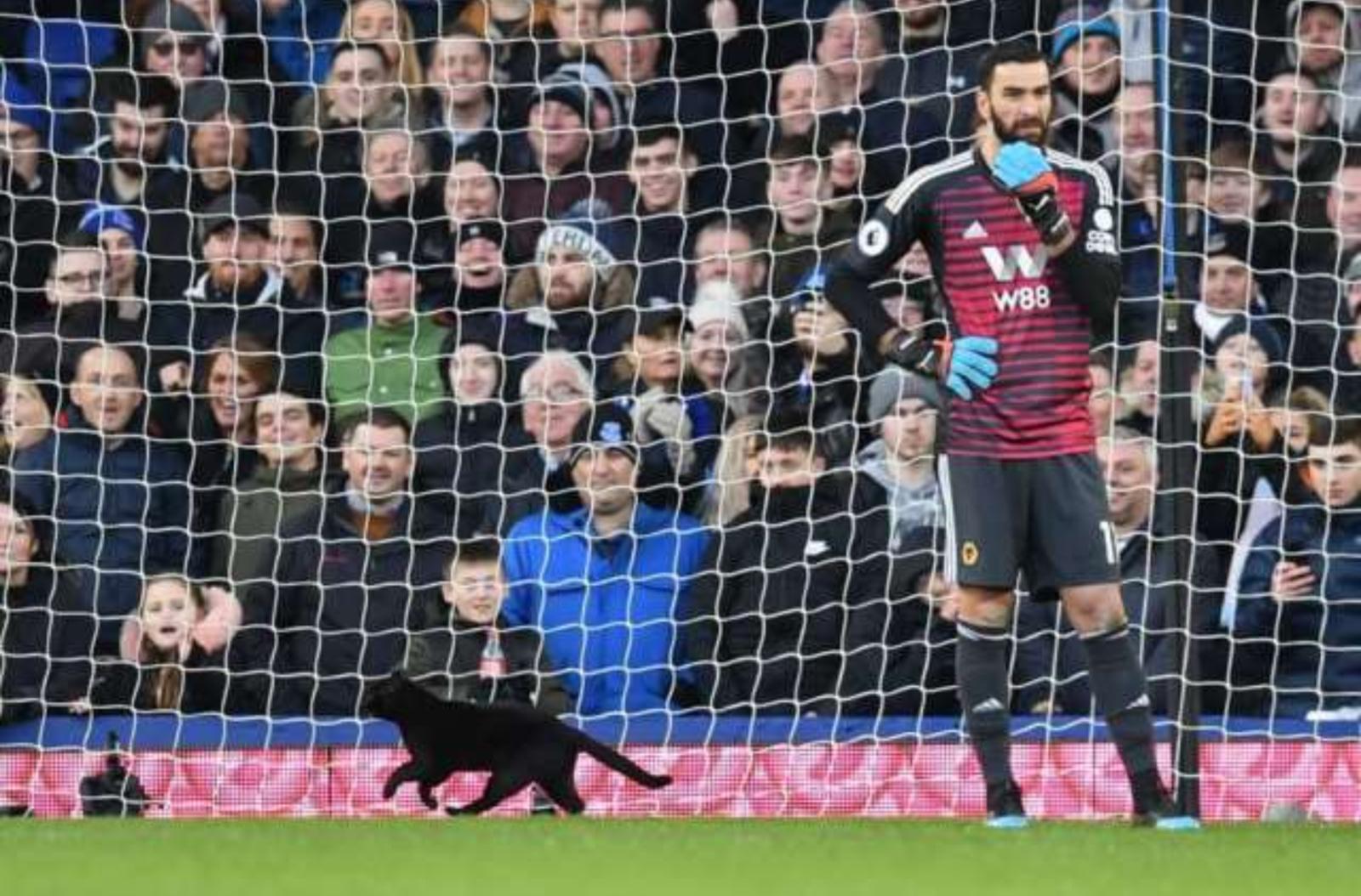 Griūk iš juoko: juoda katė įsiveržė į futbolo mačą (vaizdo įrašas)
