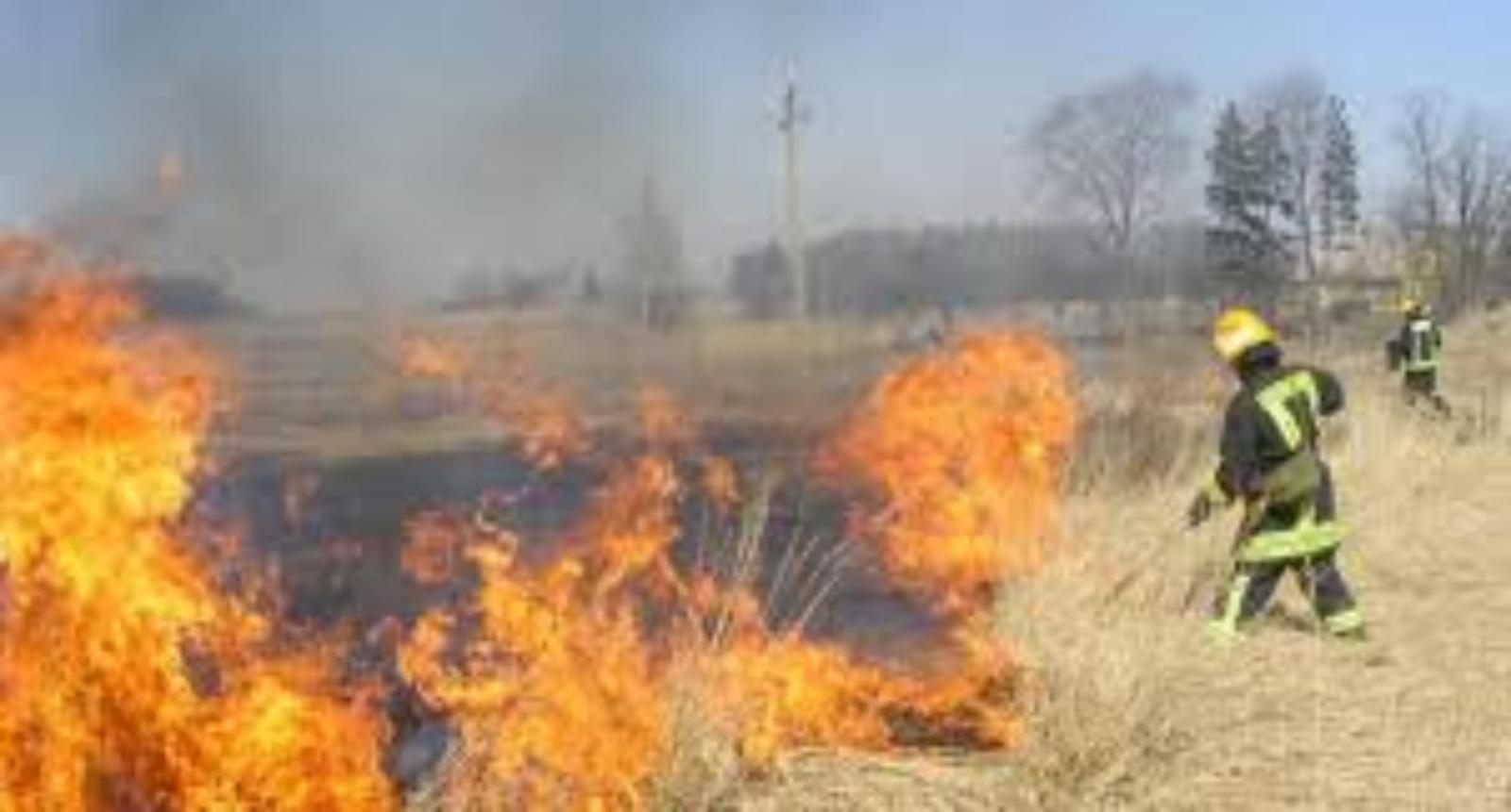 Ugniagesiai įspėja: padegta žolė plinta žaibiškai