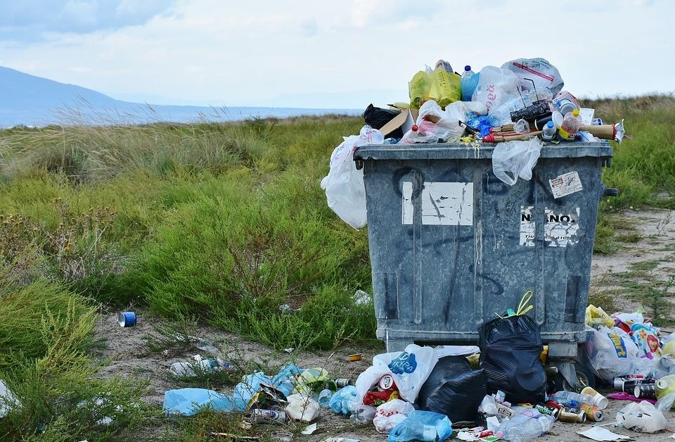 Renkama informacija apie Lazdijų rajono savivaldybės teritorijoje esančias užterštas šiukšlėmis vietas