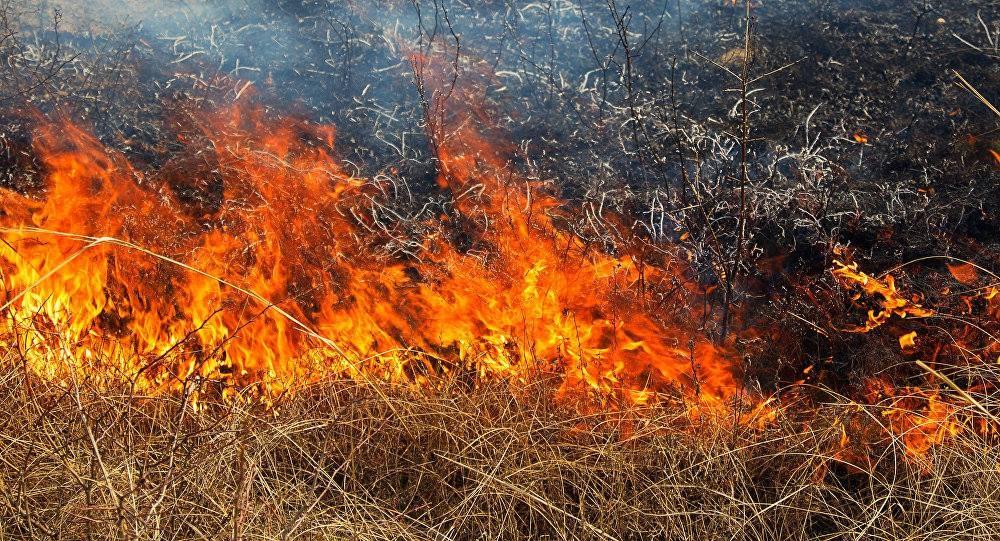 Ugniagesiai gelbėtojai: ugnis atostogų neturi