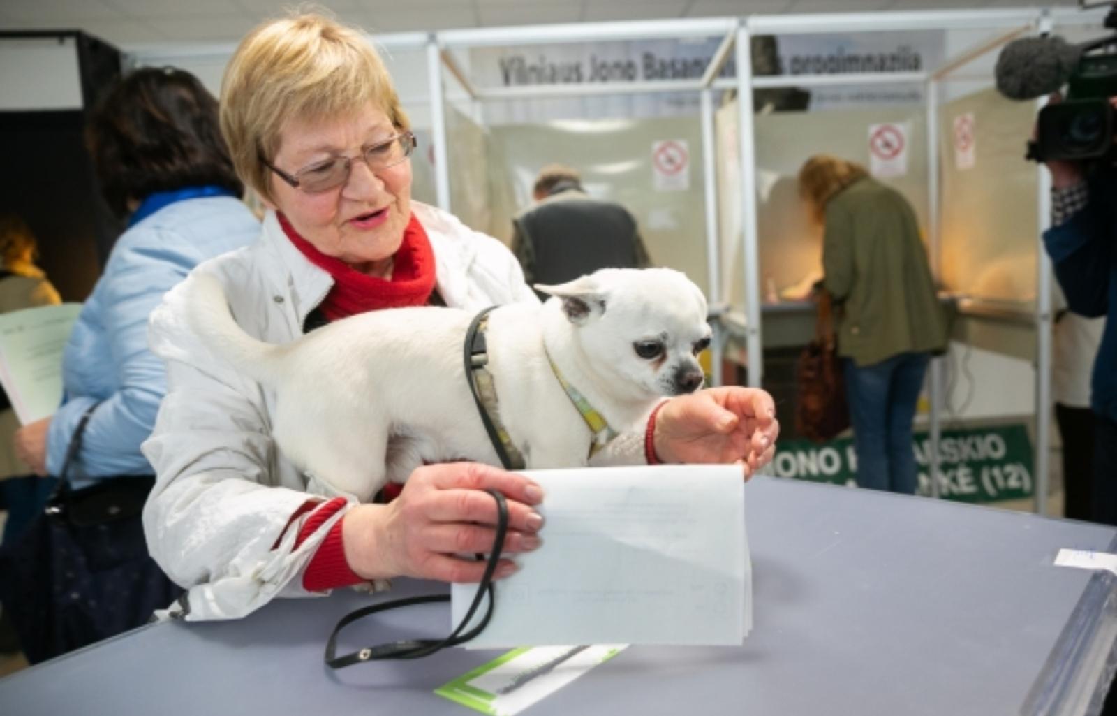 Rinkimai baigėsi: kaip balsavo Vilniaus apskritis?