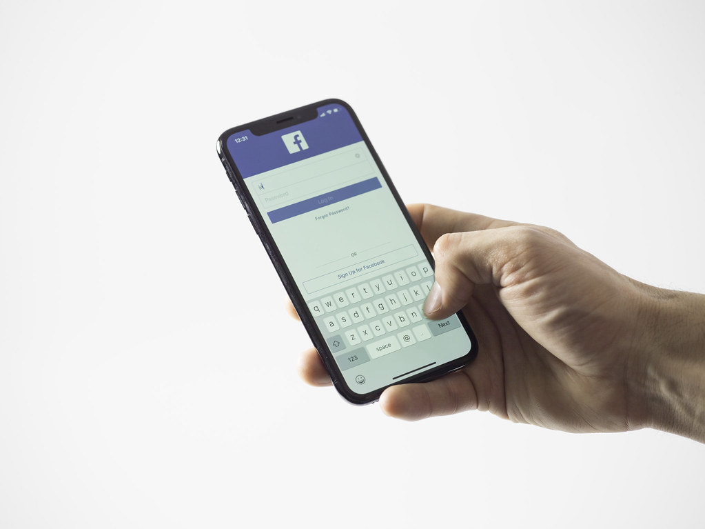 "Apgavystė socialiniame tinkle ""Facebook"""