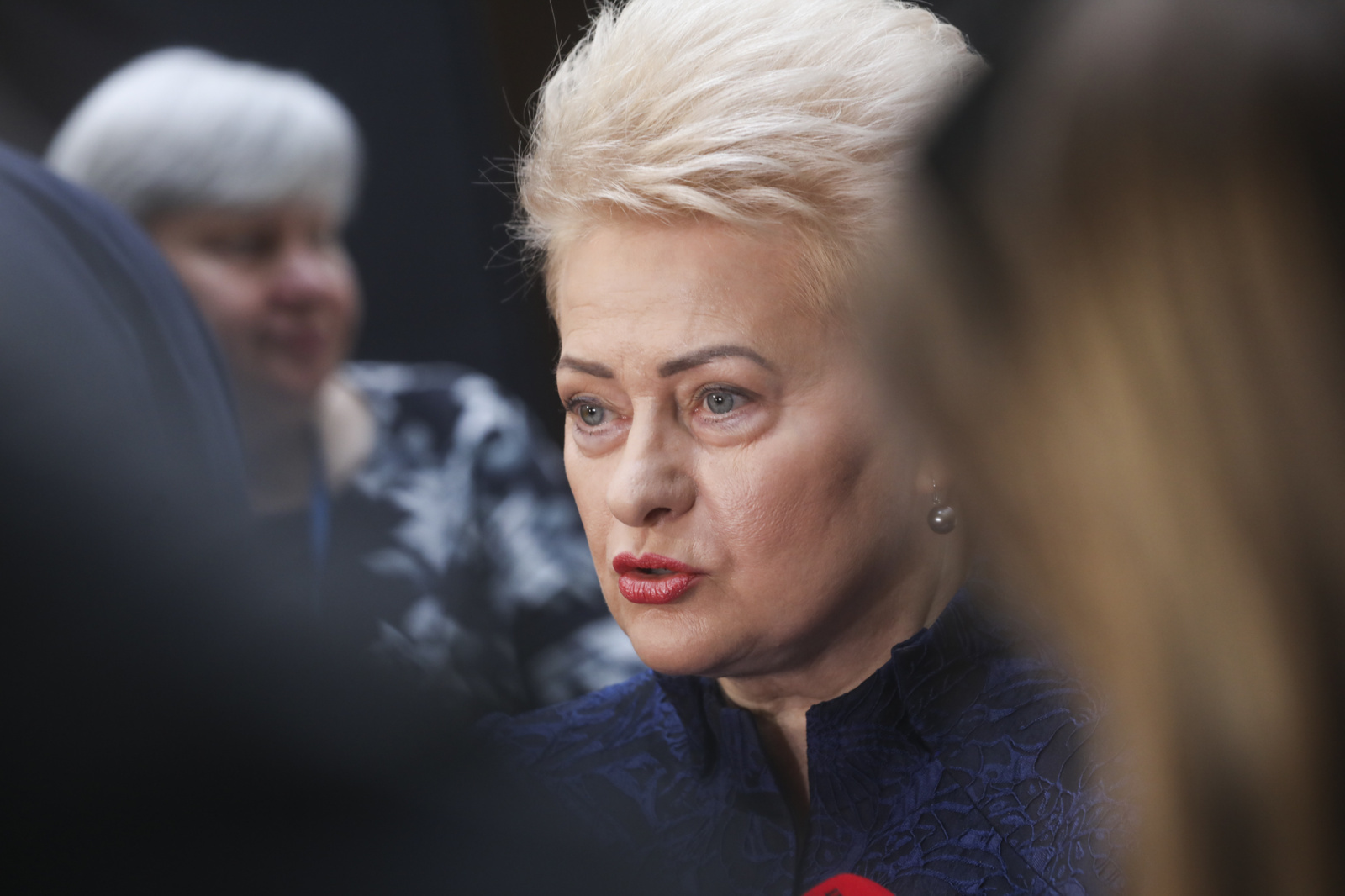 Baltarusiai įvertino D. Grybauskaitės prezidentavimą: nuo meilės iki neapykantos Minskui