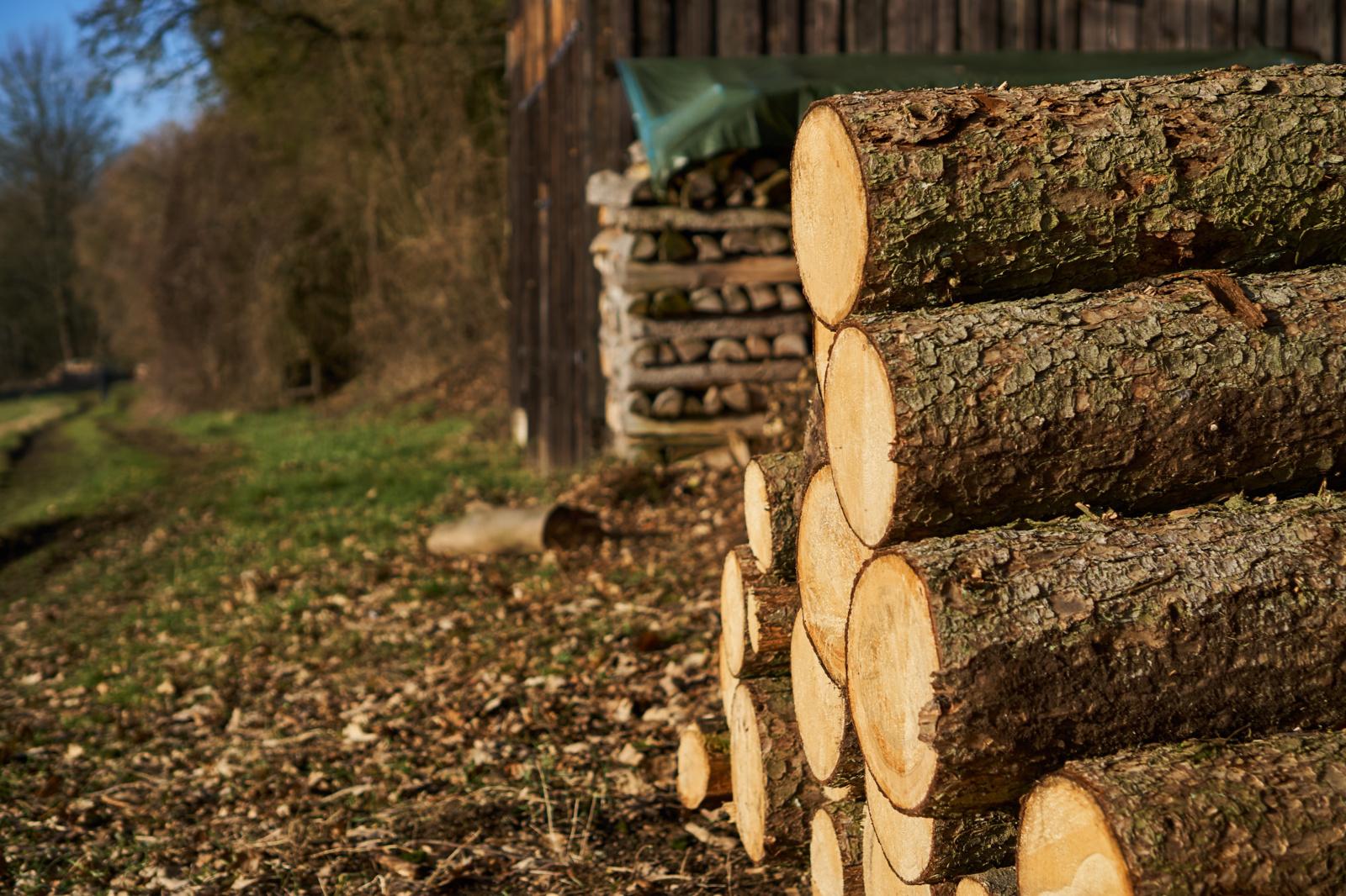 """""""Plungės šilumos tinklai"""" rūpinasi biokuru ateinančiam šildymo sezonui"""