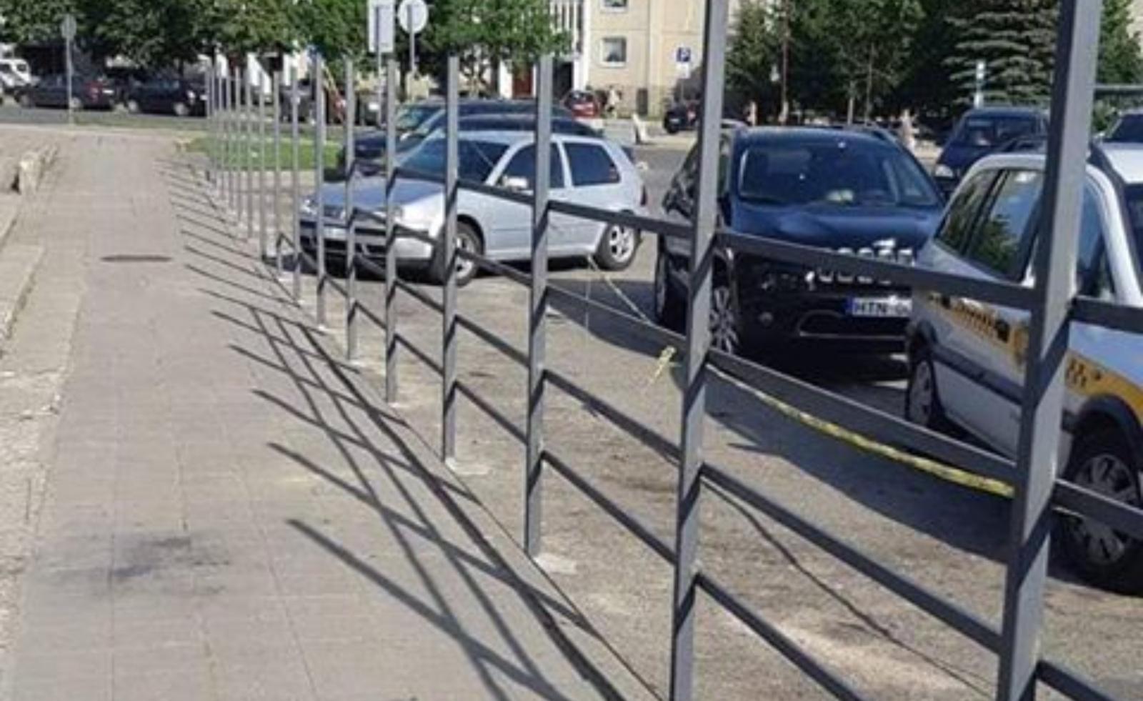 """Prie """"Lyros"""" savavališkai statoma tvora?"""