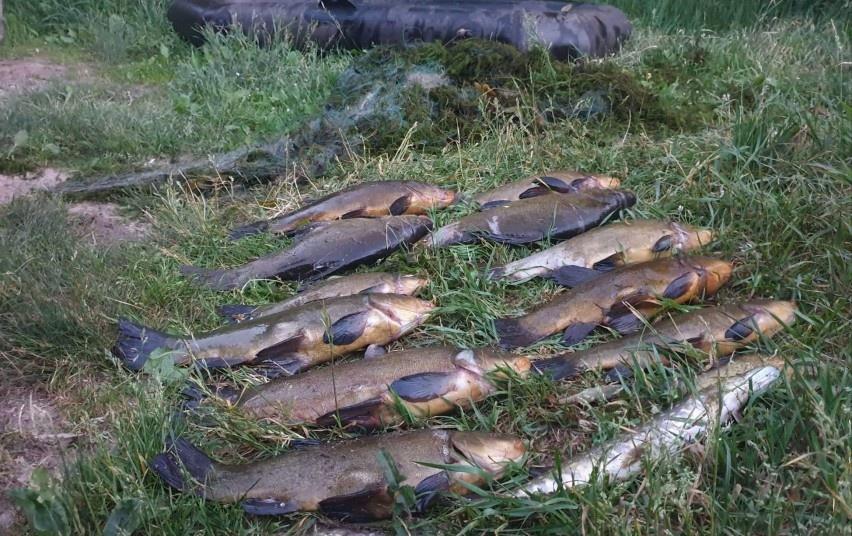 Trakų rajone sulaikytas statomuoju tinklu 13 žuvų pagavęs asmuo