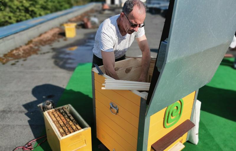 """""""Utenos trikotažas"""" imasi miesto bitininkystės – ant savo stogo įkurdino bičių šeimas"""