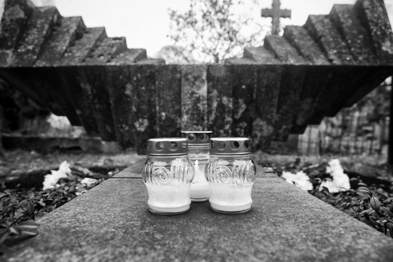 Kupiškio rajone nuo kapo pavogtos tujos