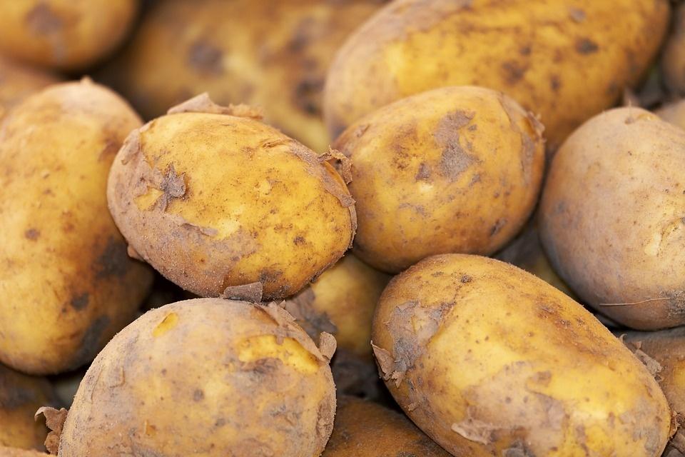 Plyta - už 100,  dvi bulvės - už 170 eurų