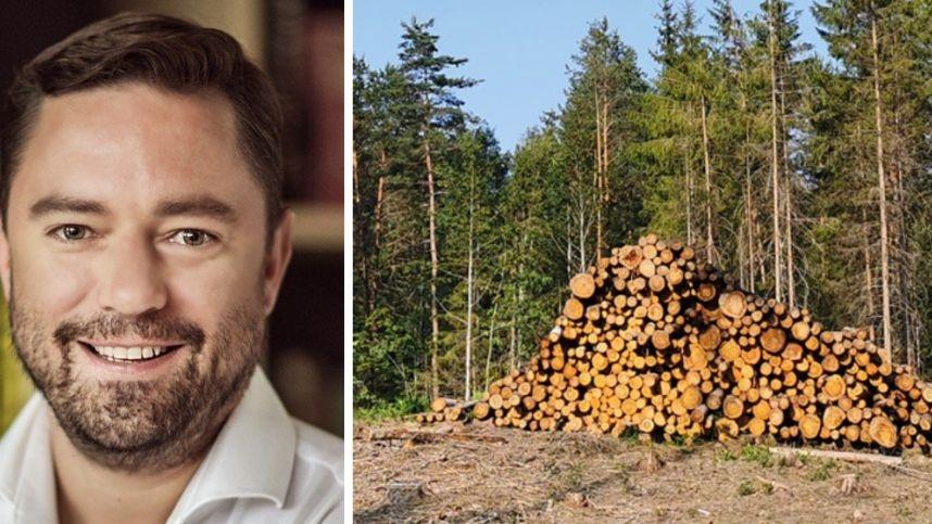 Verslininkas L. Andriulis: kirsdami ir eksportuodami medį esame bananų respublika