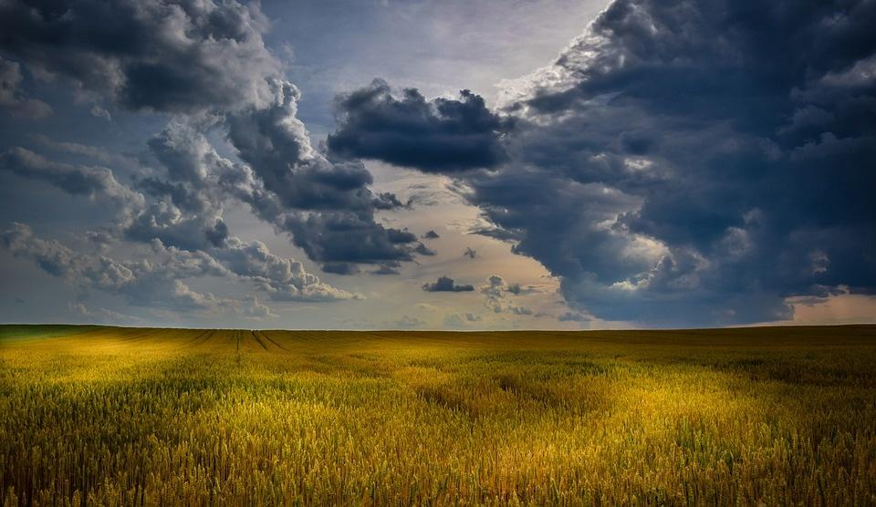 Orai: rugpjūčio startas bus apniukęs ir vėsus