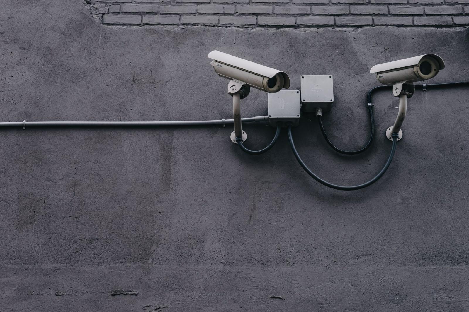 Pagėgiuose vagims užkliuvo stebėjimo kameros