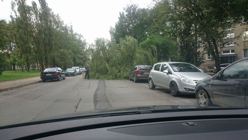 25 kartus vykta šalinti nuvirtusių medžių, 26 tūkst. vartotojų sutriko elektros tiekimas