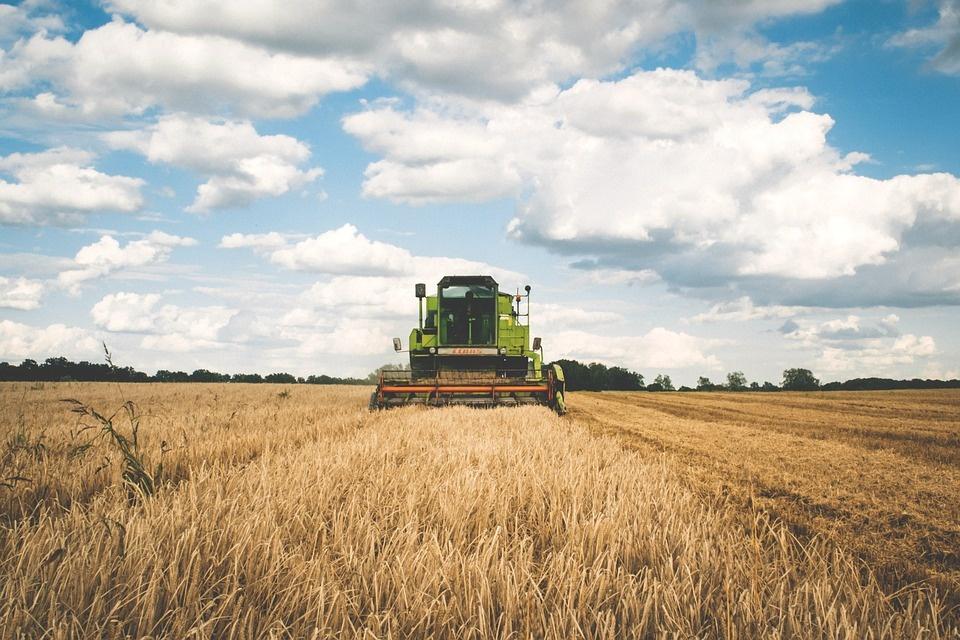 Darbymečiu žemės ūkyje – daugiau dėmesio darbų saugai