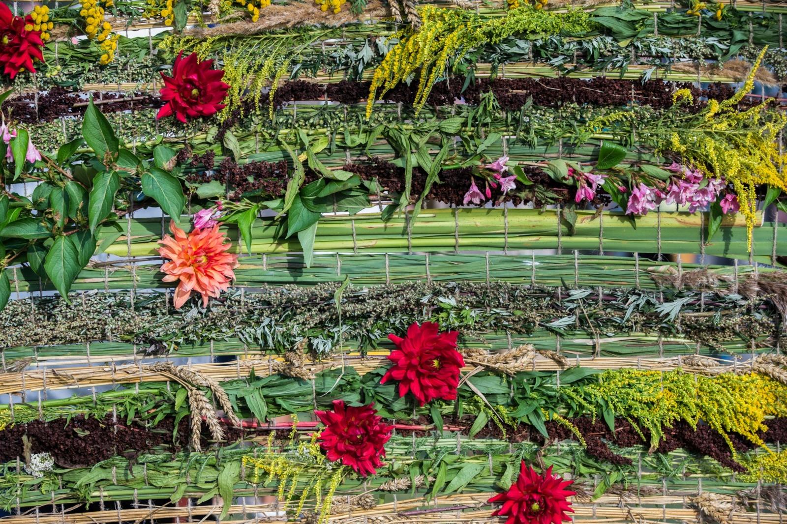 Prie Žaliūkių malūno skleidėsi gražiausios Žolinių puokštės (nuotraukų galerija)