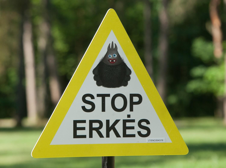 Vilniaus valdžia tikisi erkių gaudyklėmis išsiaiškinti šių parazitų paplitimą