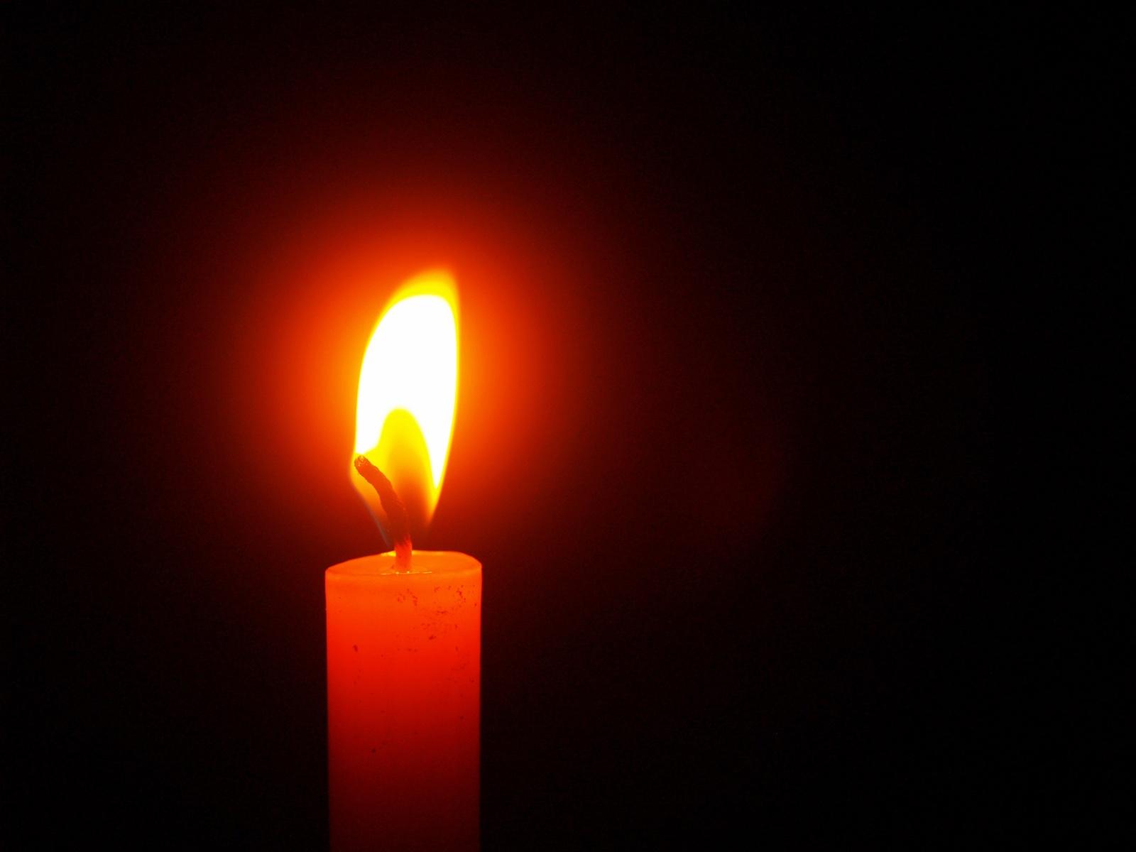 Lietuvoje – ketvirtoji mirtis nuo erkinio encefalito