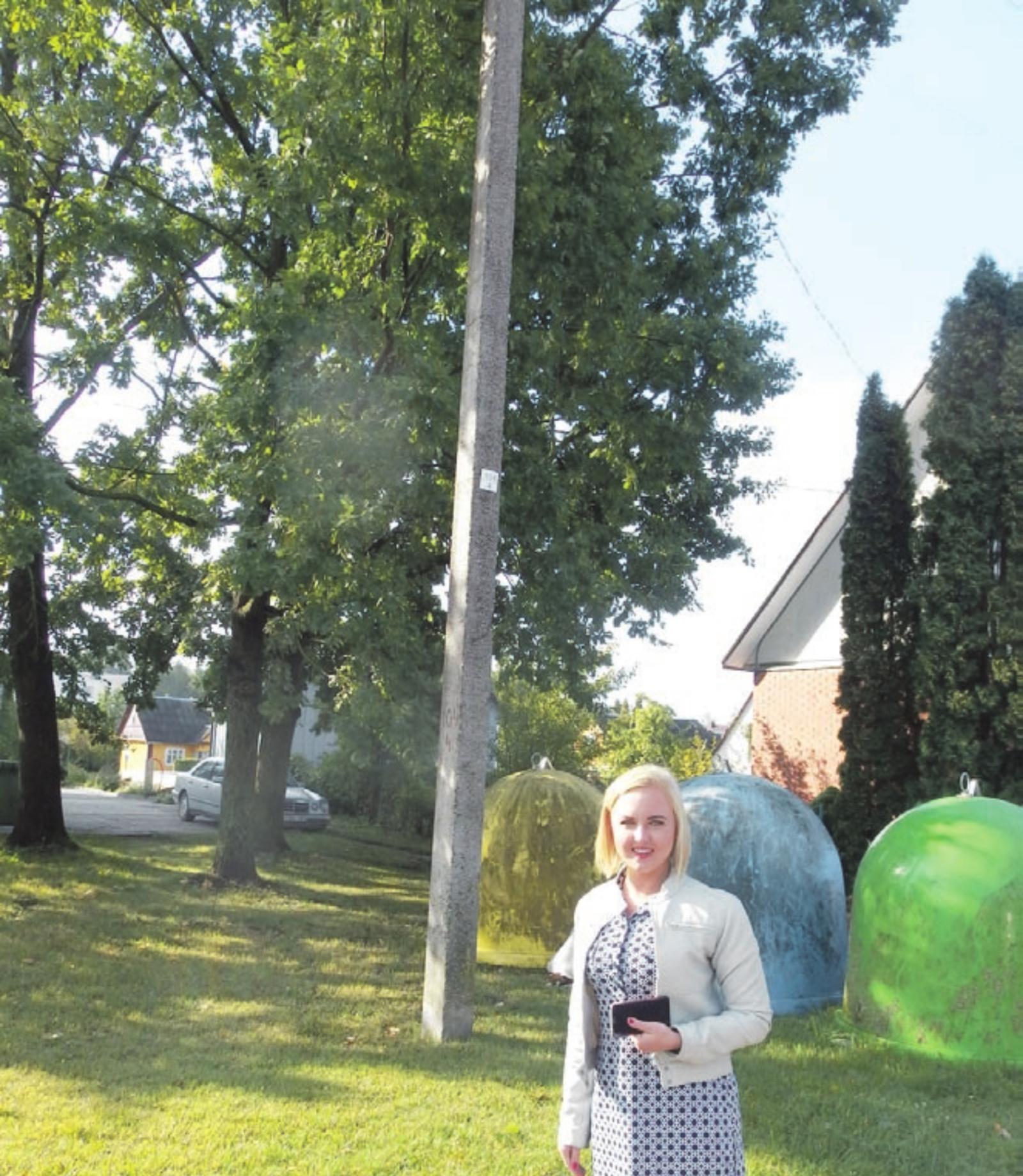 J. Janonio gatvėje neramina medžiuose įsipynę laidai