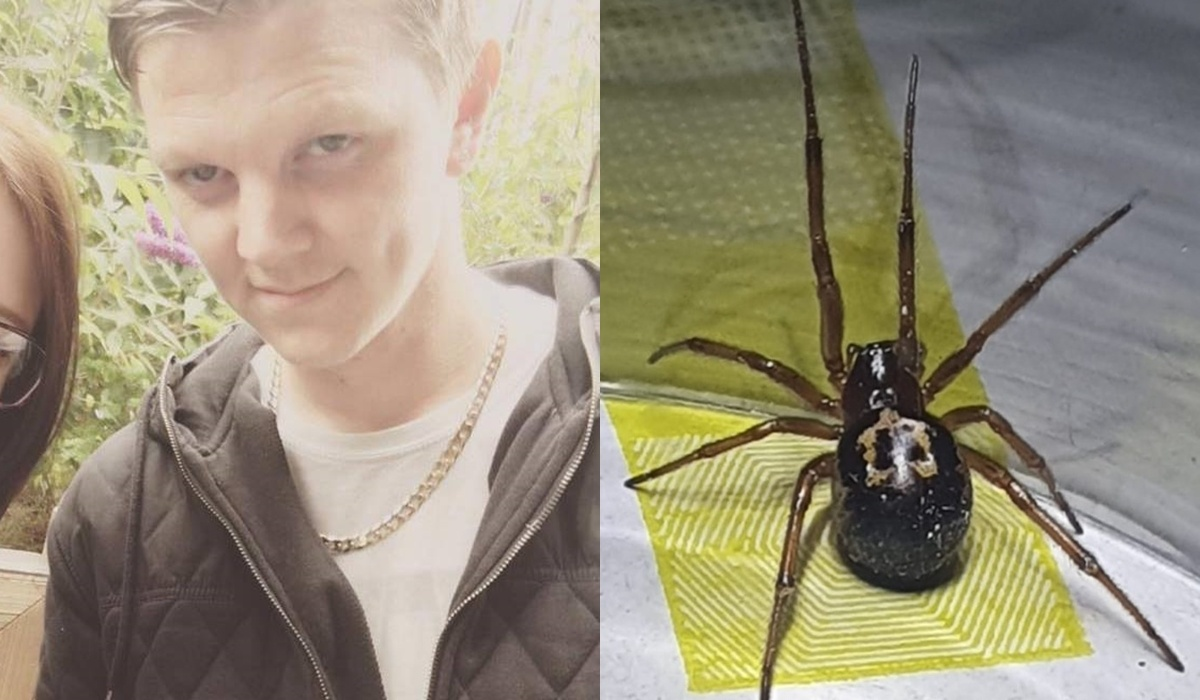 Britai šokiruoti – po vorų įkandimų vyras sunkiai bepajuda