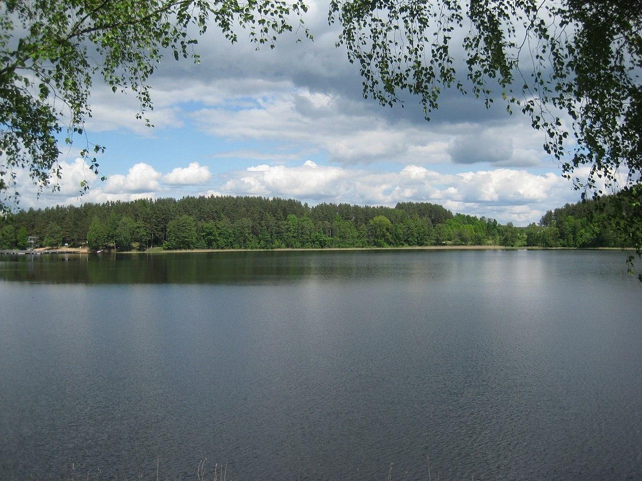 Planuojama tvarkyti Zarasaičio ežero aplinką