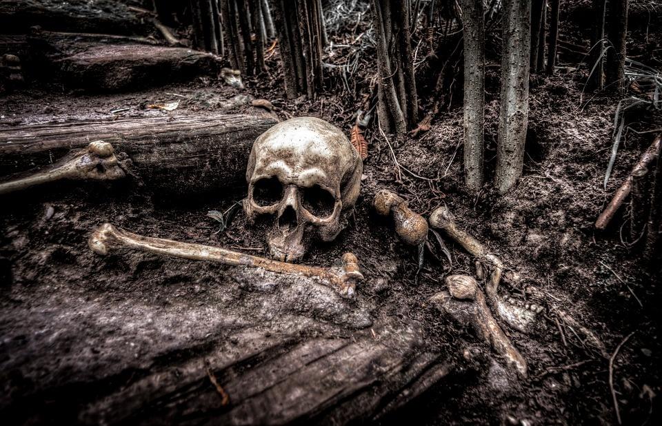 Kaune rasti žmogaus kaulai