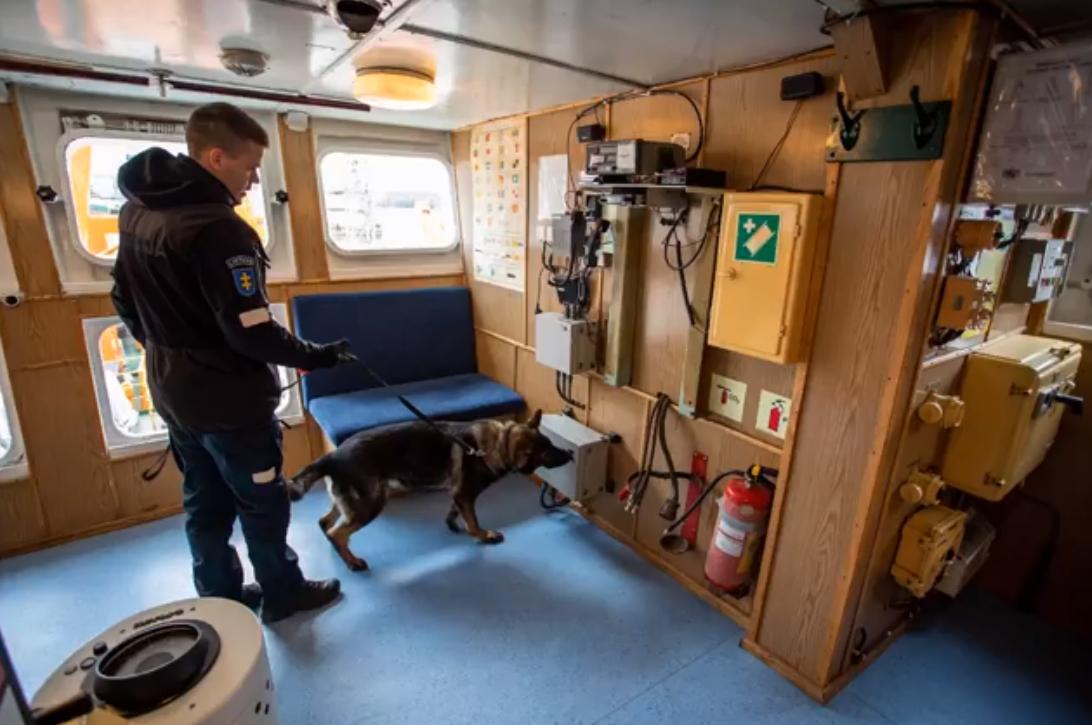 Klaipėdos pareigūnai pademonstruos tarnybinių šunų sugebėjimus