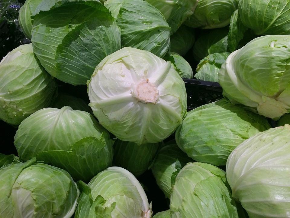 Kuo naudingas baltagūžis kopūstas (+3 salotų receptai)