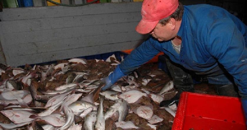 Lietuvos žvejai pasiryžę pjaustyti savo laivus