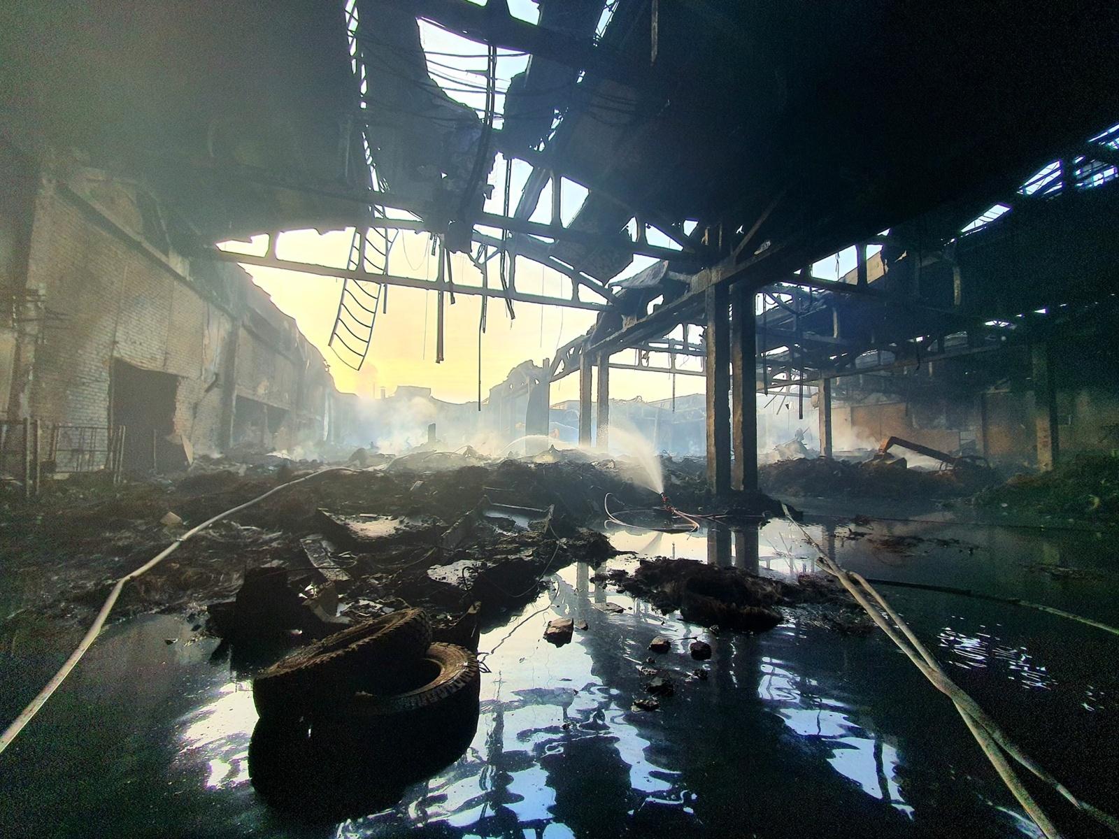 N. Cesiulis pasibaisėjo Aplinkos ministerijos rekomendacijomis užterštą po gaisro vandenį išpilti į Nemuną