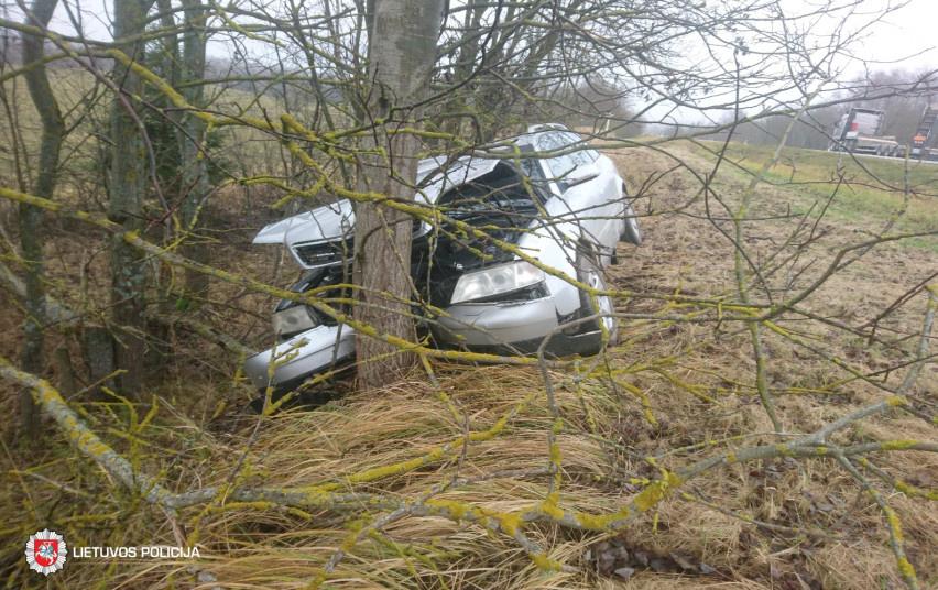 Zarasų rajone į medį atsitrenkė automobilis