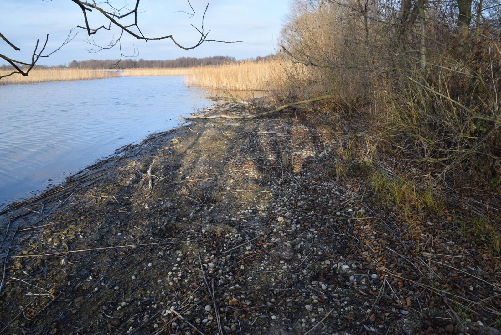 Dusios ežeras ir klimato kaita